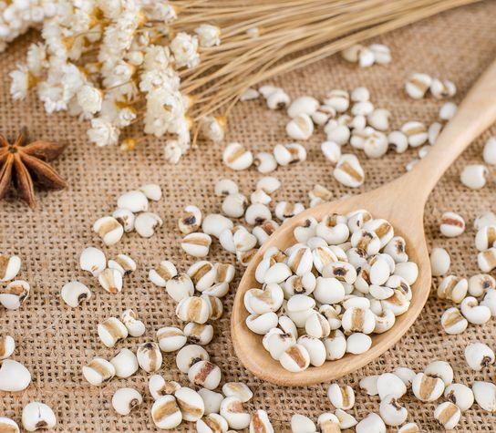 Semienka slzovky: Posilnia organizmus a pomôžu aj pri chudnutí