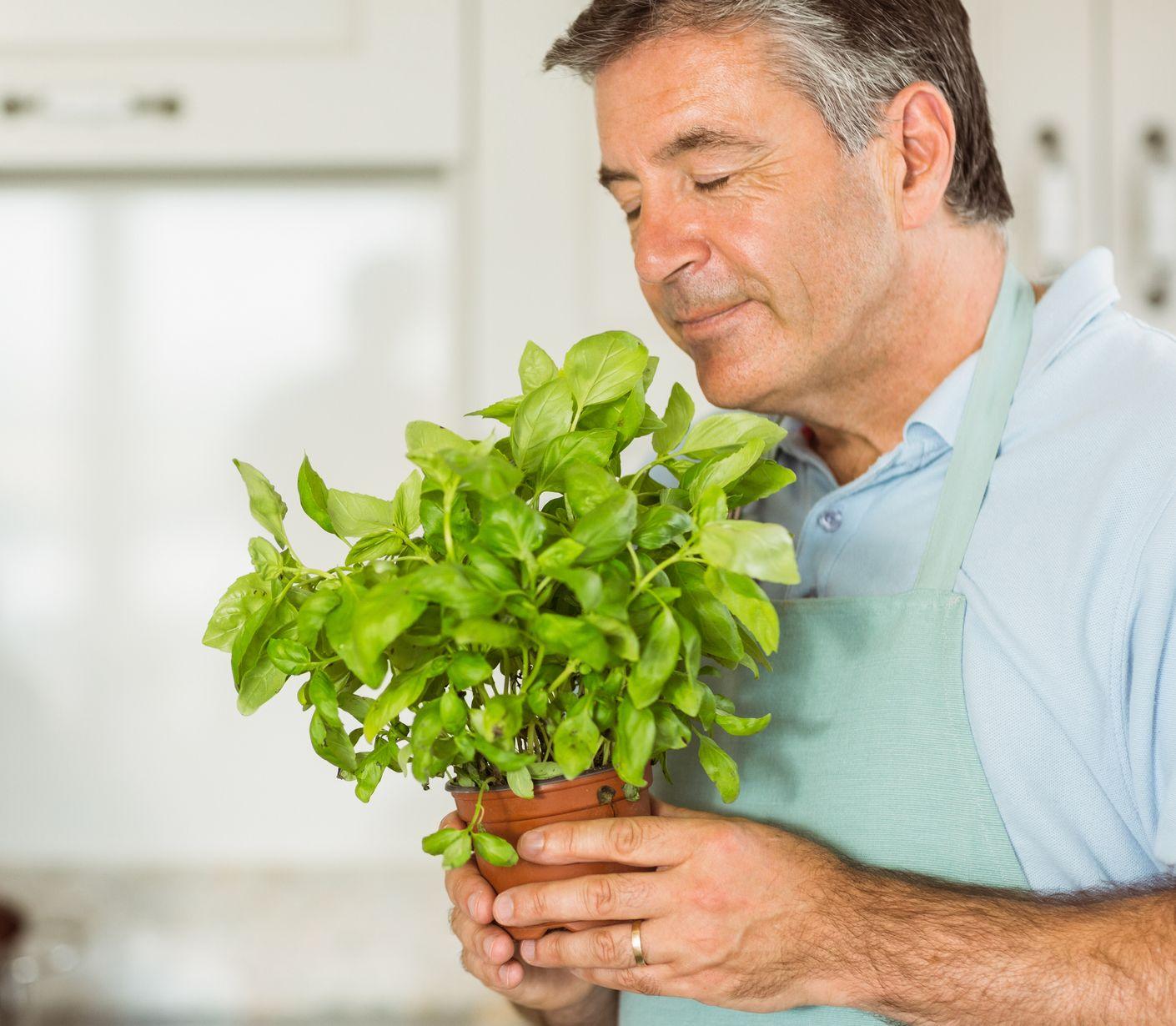 Spoznajte top bylinky pri chudnutí: Dodajú chuť a pomôžu vášmu tráveniu – trochu sme to vyhypovali