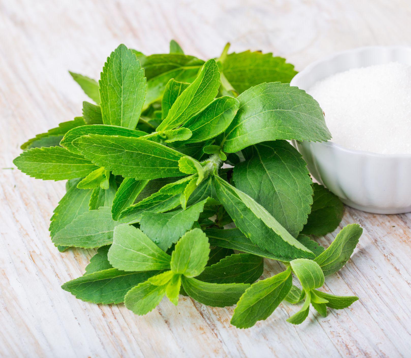 Ideálna náhrada cukru: Stévia je bez kalórií a vhodná pre naše zdravie