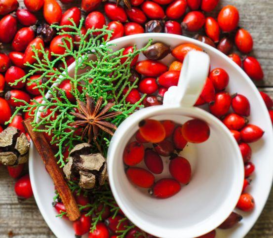 Červená krása šípok volá na zber: Využite ich silu a získajte pevné zdravie