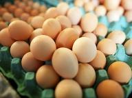 Chyba, ktorú robíte a neviete o nej: Takto sa z vajíčok stáva nepriateľ!