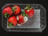 Je bezpečné jesť potraviny s plesnivou časťou? Tieto by ste mali nekompromisne zahodiť!