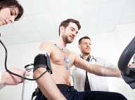 Srdce ako zvon aj bez pohybu? Vedci objavili proteín s neuveriteľnými účinkami