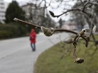 Chladný úvod jari sa môže podpísať na našom zdraví, varuje psychiater