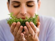 Detoxikácia bez odriekania a hladu: Deväť bylín, ktoré naštartujú telo i dušu