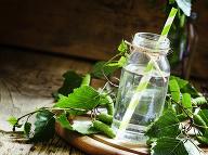 Voda zo stromu nielen ako elixír pre vlasy: Účinky, z ktorých sa vám zakrúti hlava!