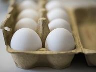 Najväčší potravinový škandál leta: Látka z kontaminovaných vajec sa používa aj proti všiam!